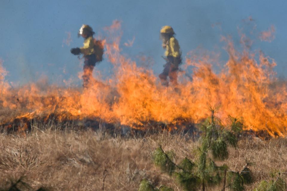 Śmierć w pożarze traw