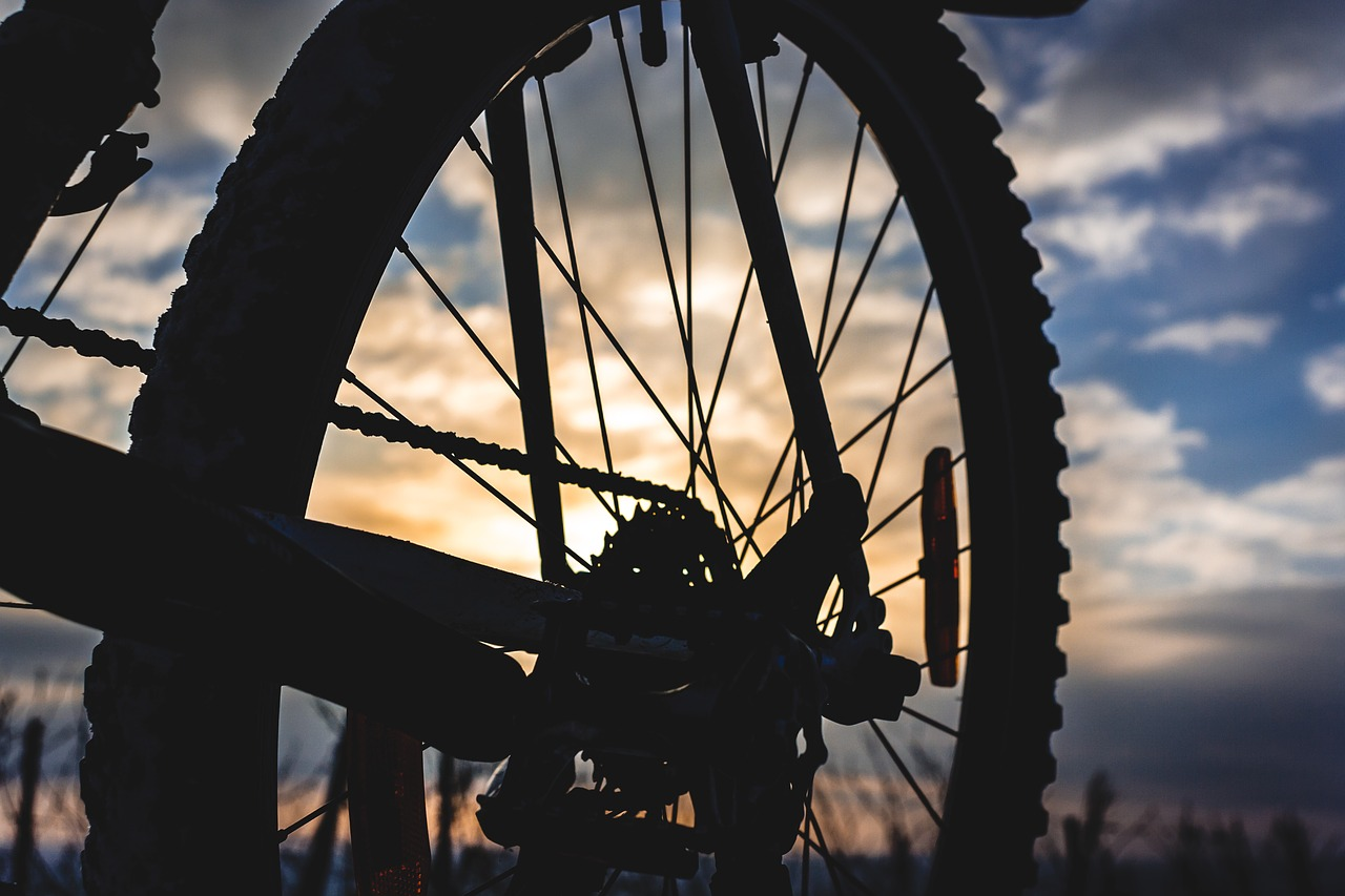 Śmiertelne potrącenie rowerzystki