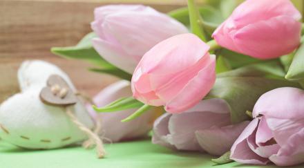 Najserdeczniejsze życzenia z okazji Dnia Matki!
